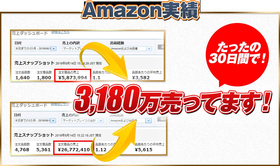 Amazon販売実績